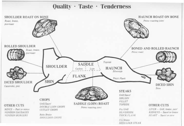 2627779559 besides Moose Meat Chart further Stock Illustration American Us Meat Cuts Diagrams Beef Pork Lamb Rabbit Chicken Duck Goose Turkey Image61345552 in addition Beefcuts further Organizational Structure And Design. on diagram of cuts meat